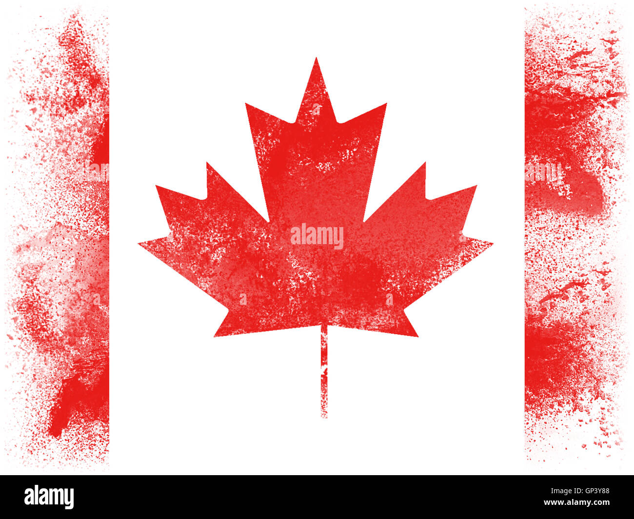powder paint exploding in colors of canada flag isolated on white