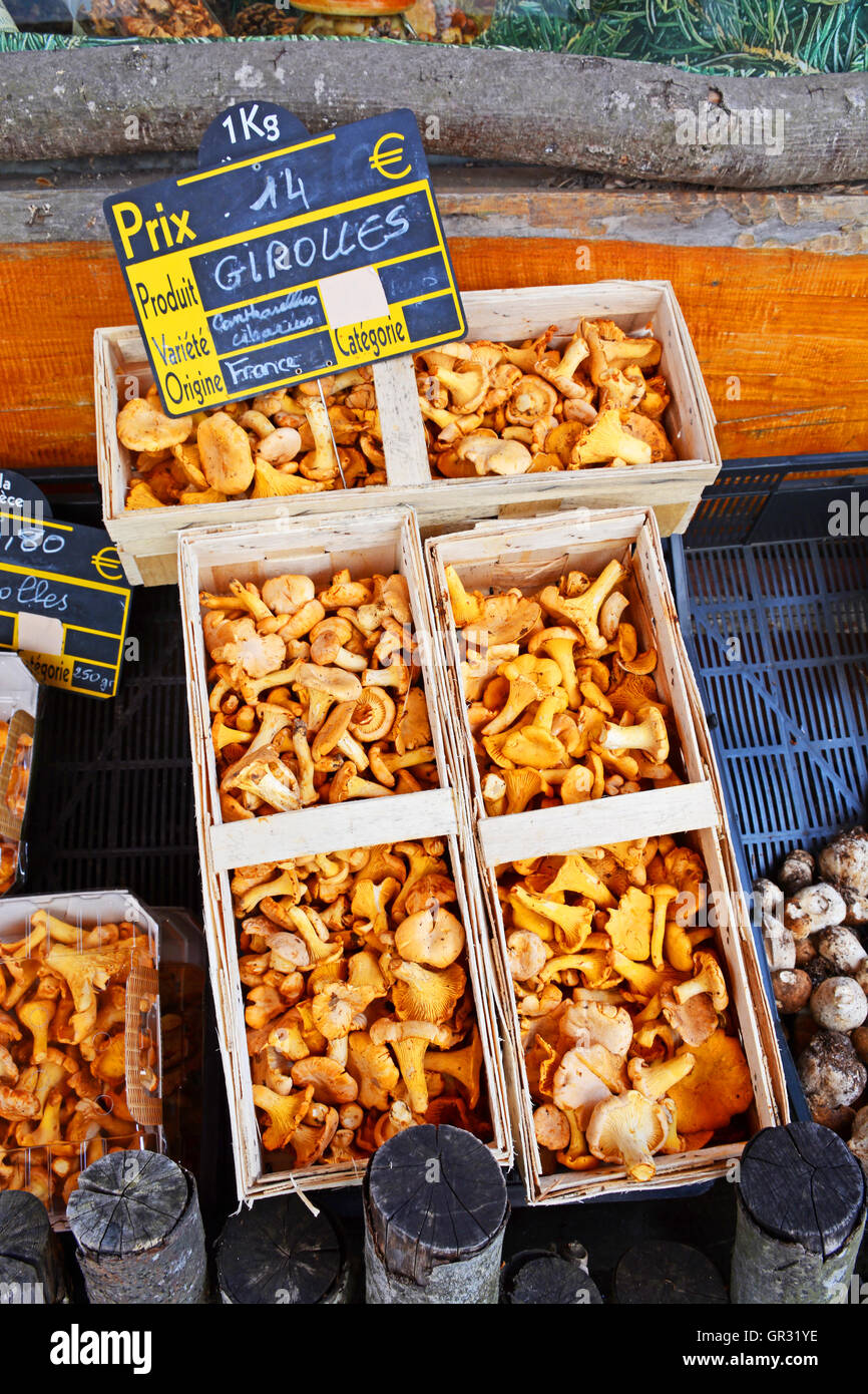 Girolles in wooden basket on stall of greengrocer shop La Chaise ...
