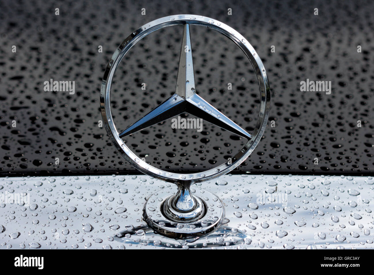 Mercedes benz star logo on an rainy hood stock photo for Mercedes benz star logo
