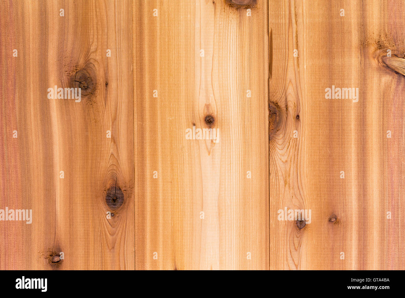 cedar wood background texture with vertical boards and a