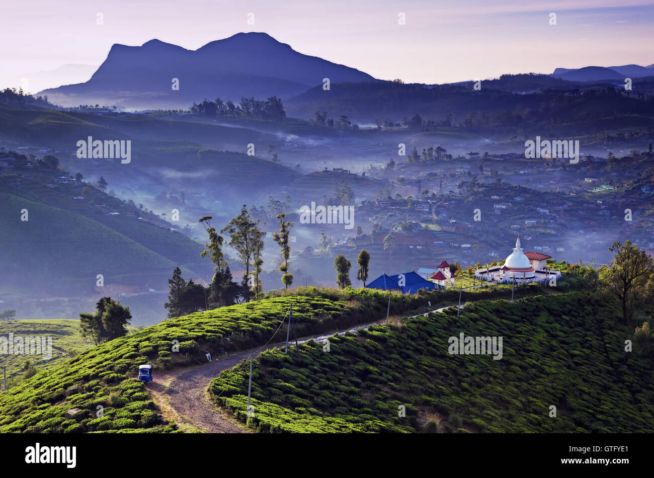 nuwara eliya asian singles From ravana's landing point at thotupolakanda to the less demanding 1km walk to single tree, an array of treks with exhilarating panoramic views to top your stay in nuwara eliya.