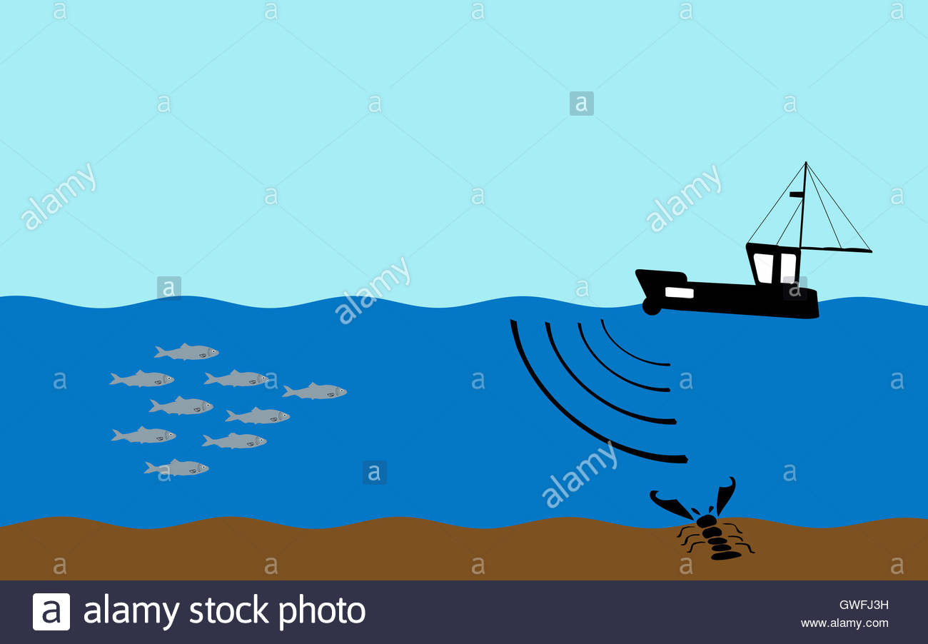 illustration - fishing boat using sonar to detect fish shoals, Fish Finder