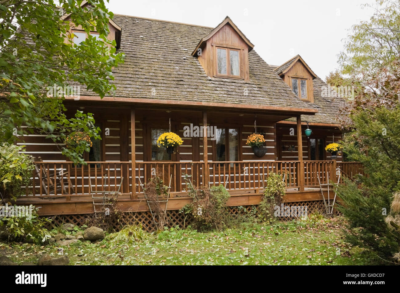 Rustic Canadian cottage style log home facade and landscaped front lawn in  autumn  Quebec  Canada. Rustic Canadian cottage style log home facade and landscaped front
