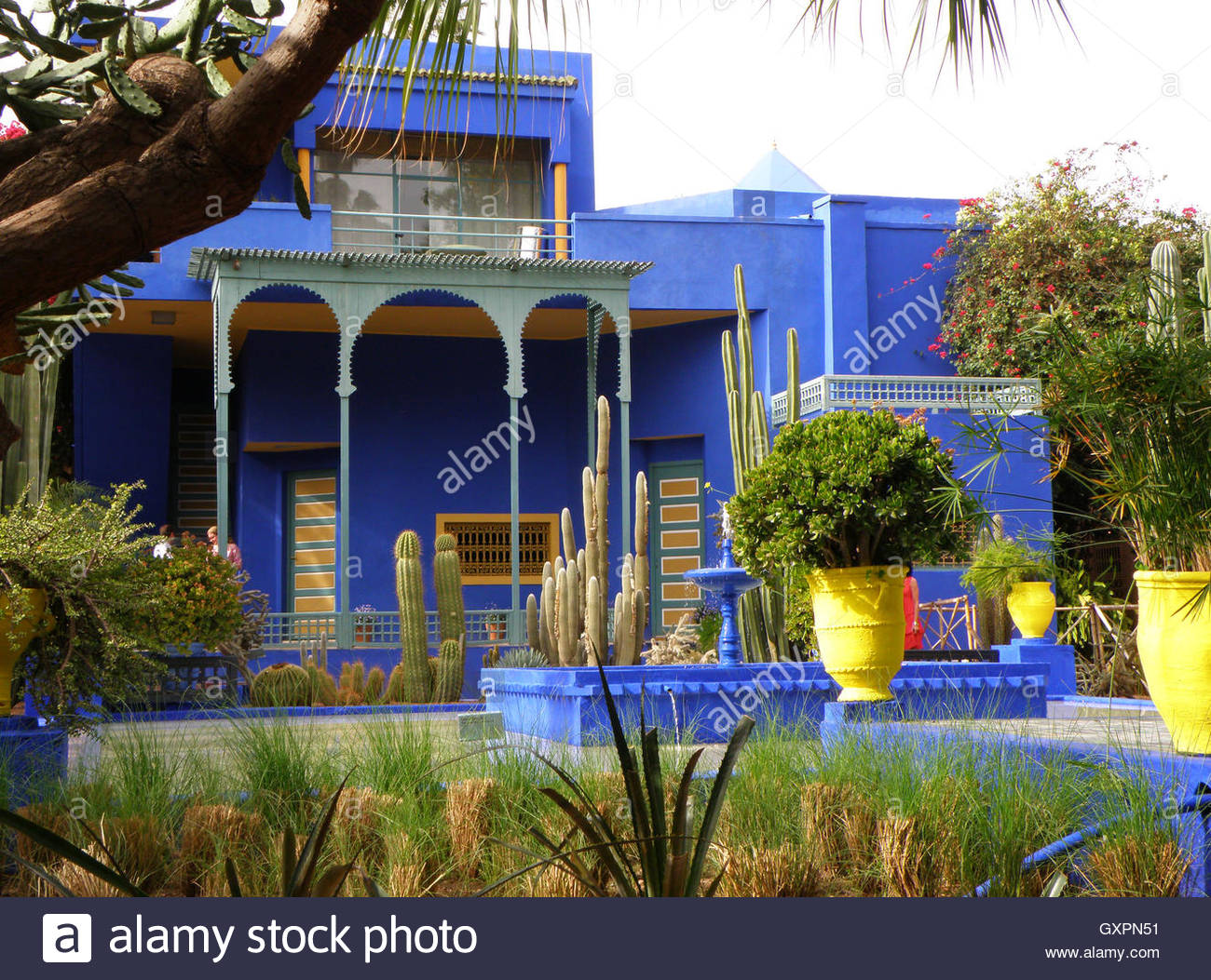 Garden majorelle marakesh check out garden majorelle for Jardin marrakech