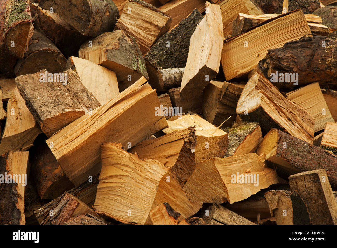 large cut pieces of pine and birch firewood for the fireplace