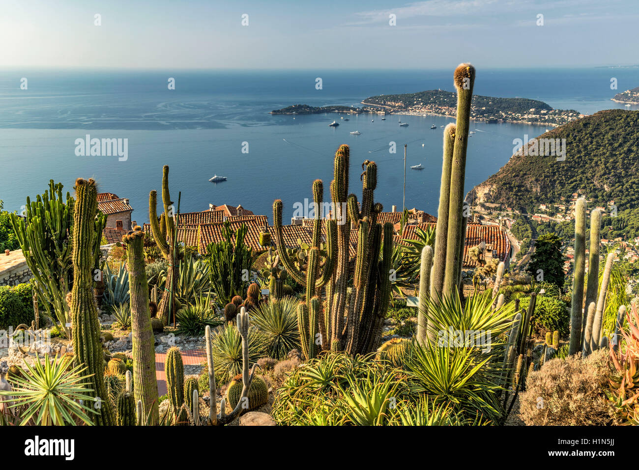 Jardin exotique cacti eze village eze provence alpes cote stock photo royalty free image - Jardin exotique d eze mulhouse ...