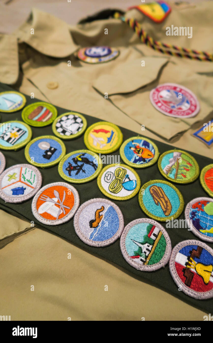 Bsa Merit Badge Sash Worksheets for all | Download and Share ...