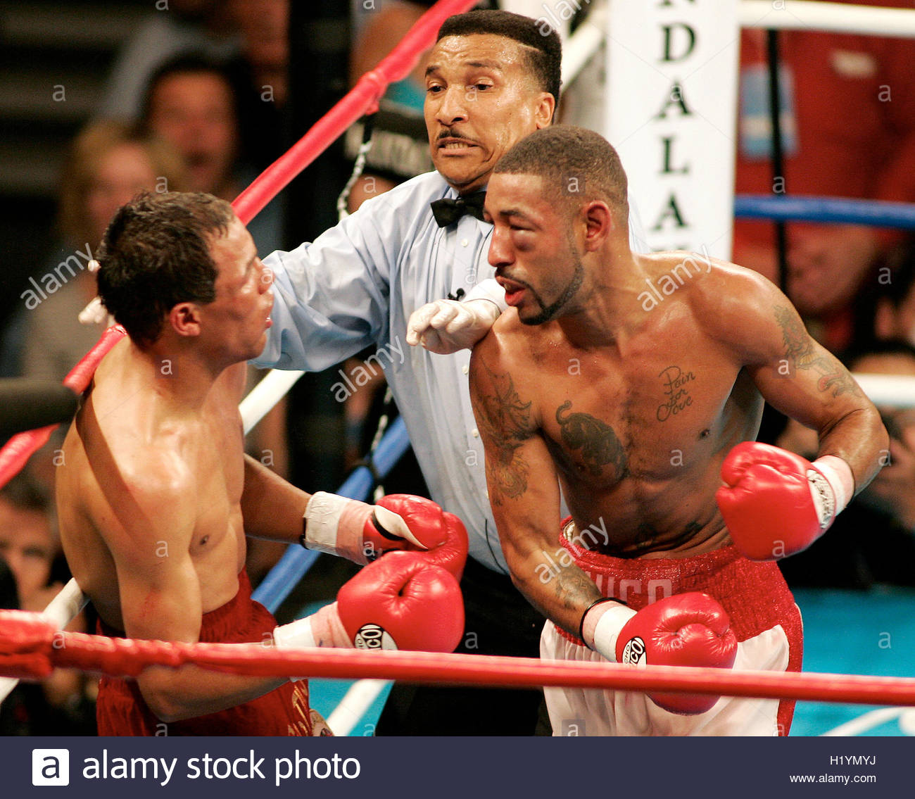 http://c8.alamy.com/comp/H1YMYJ/referee-tony-weeks-c-rushes-in-to-stop-the-fight-between-diego-corrales-H1YMYJ.jpg