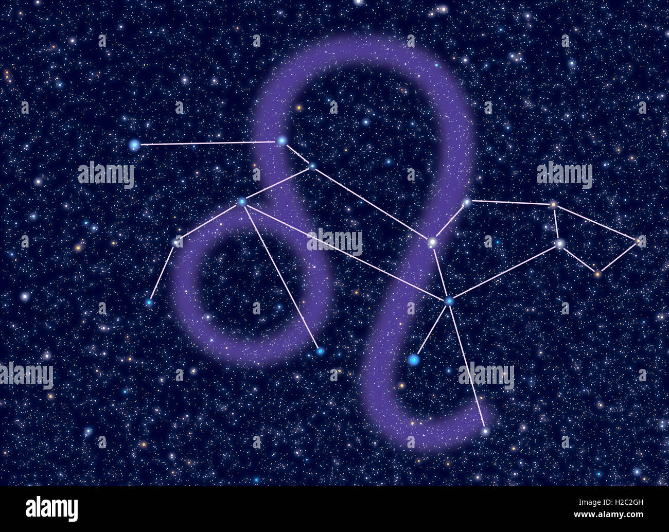 Leo (The Lion) Zodiac constellation. Leo sign corresponds to ...