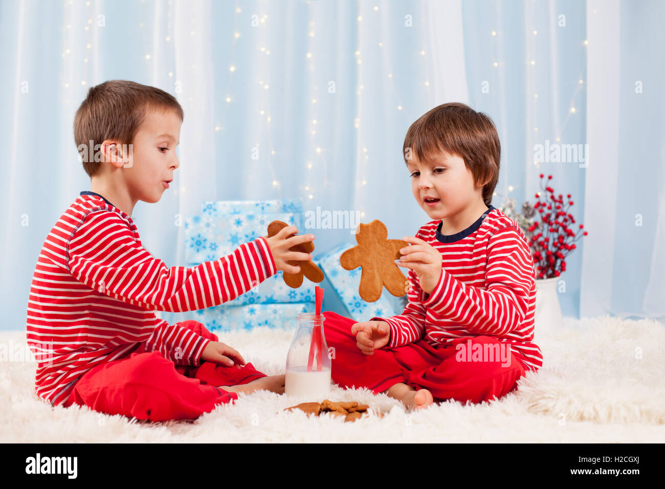 Two happy children eating cookies at christmas and drinking milk ...