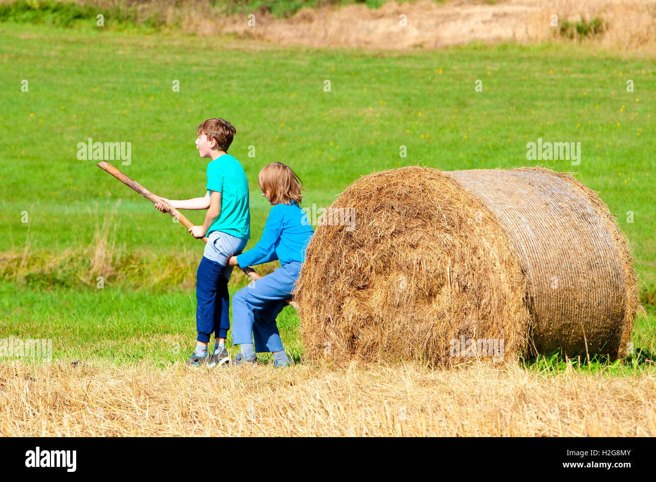 Moving Hay: Life Among The Tall Pines Moving Hay With A