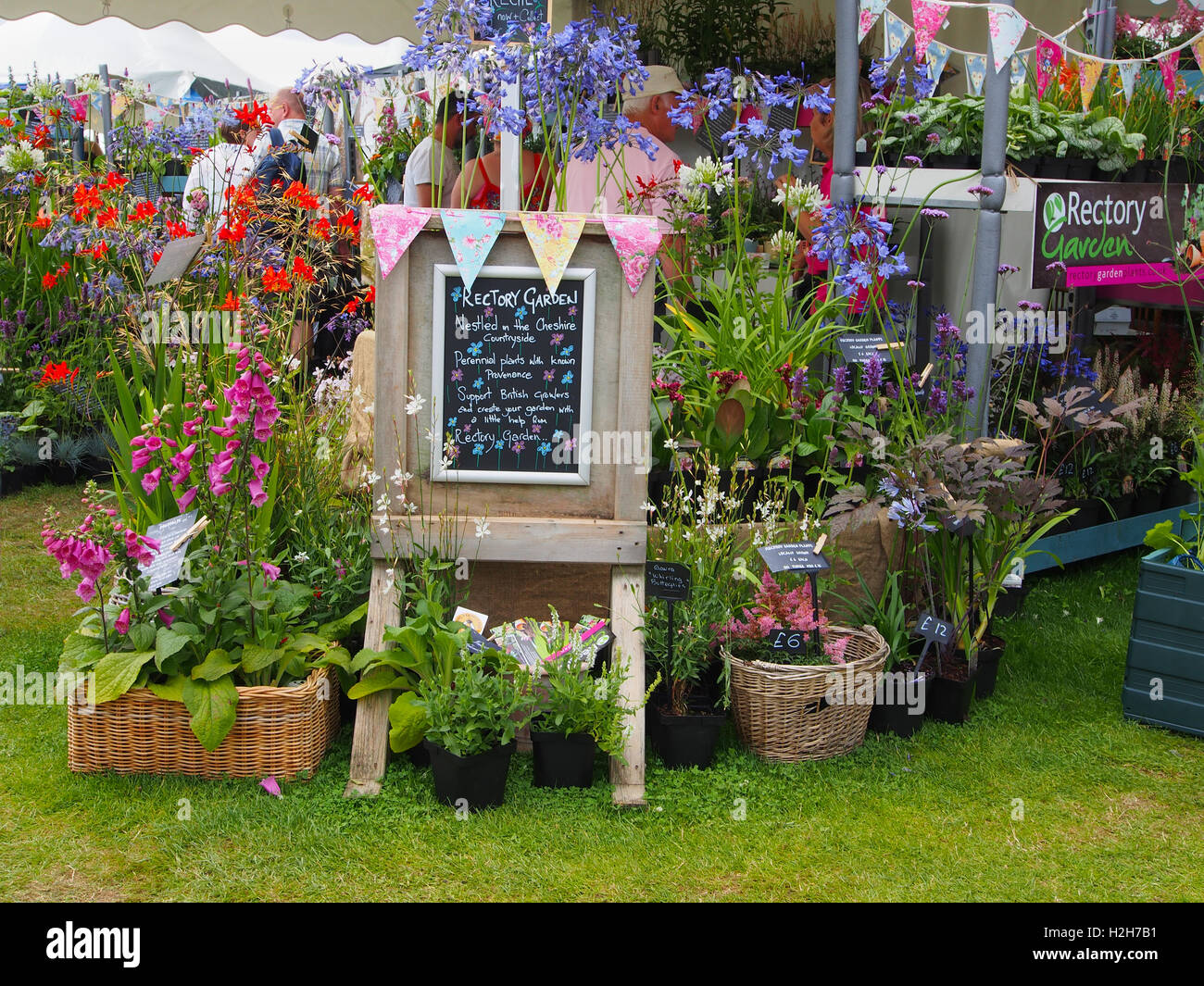 Exhibit staged by Rectory Garden Plants a nursery in Cheshire – Nursery Garden Plants
