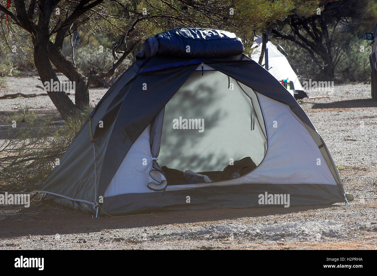 c&-site in the Australian bush with a tent igloo & camp-site in the Australian bush with a tent igloo Stock Photo ...