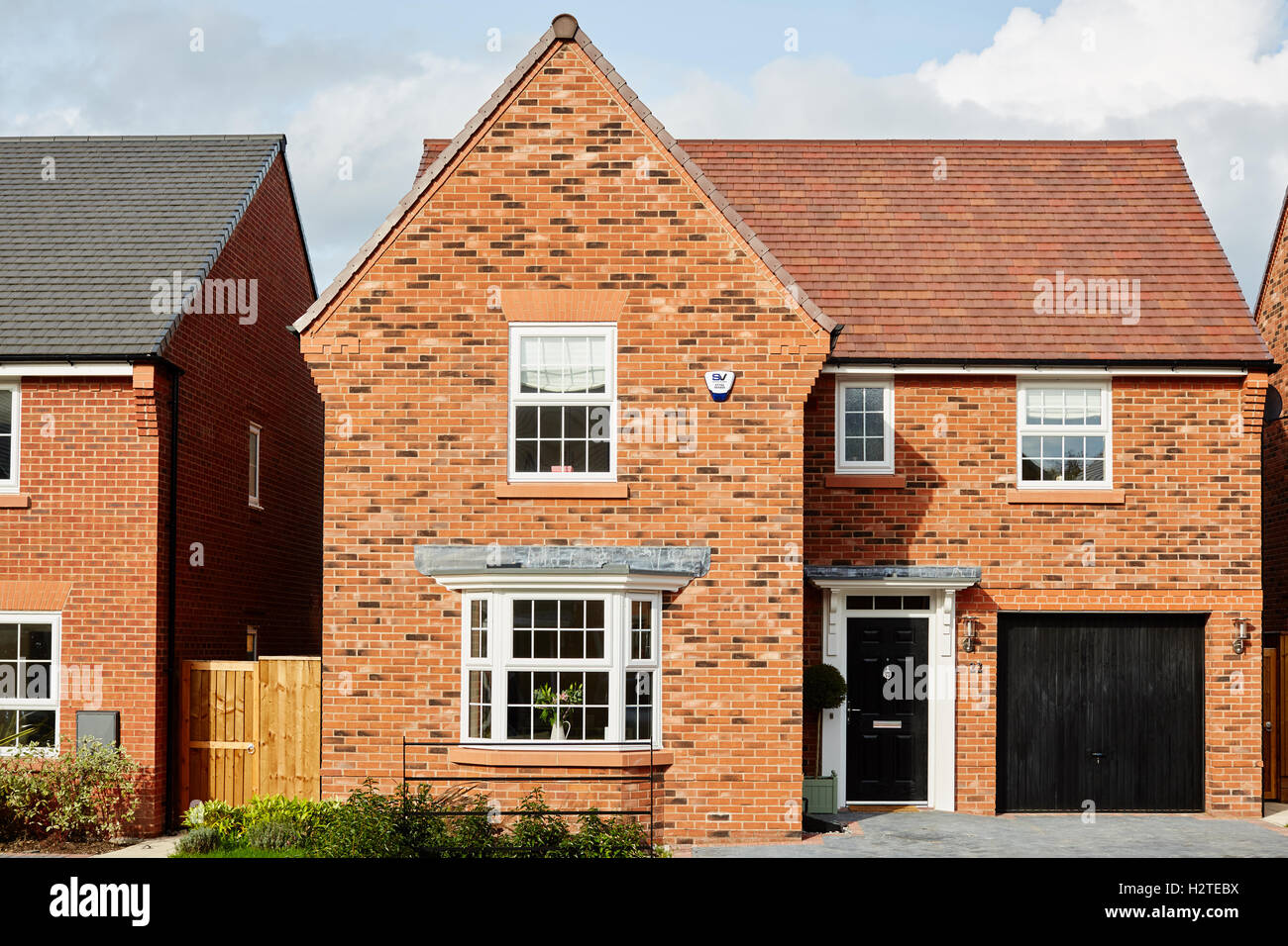 New build modern home by david wilson homes a detached for Modern new homes uk