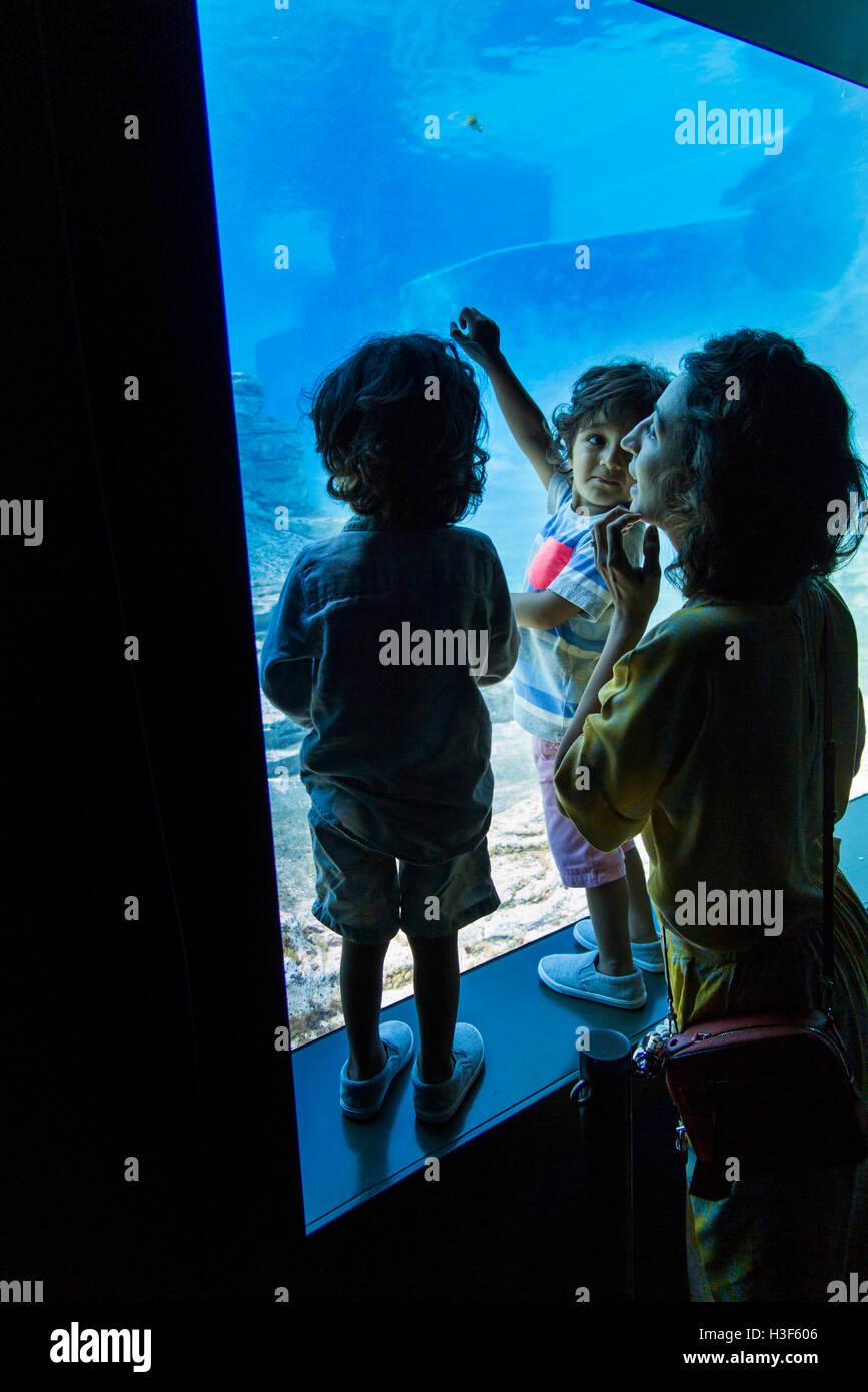 Fish aquarium in sentosa - Singapore Sentosa Sea Aquarium Mother And Children Viewing Fish In Large Tank