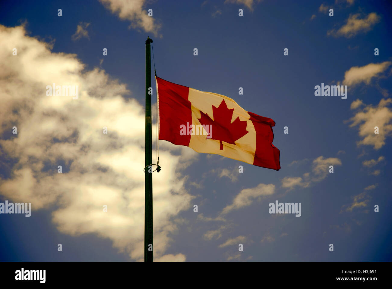 canadian flag waving on the wind stock photo royalty free image