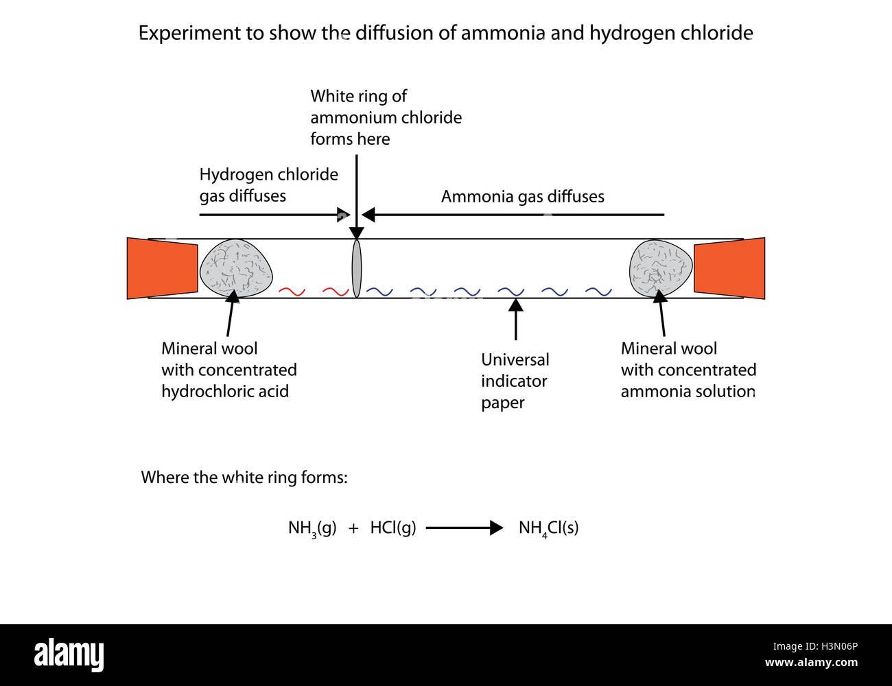 Ammonia And Hydrochloric Acid White Ring