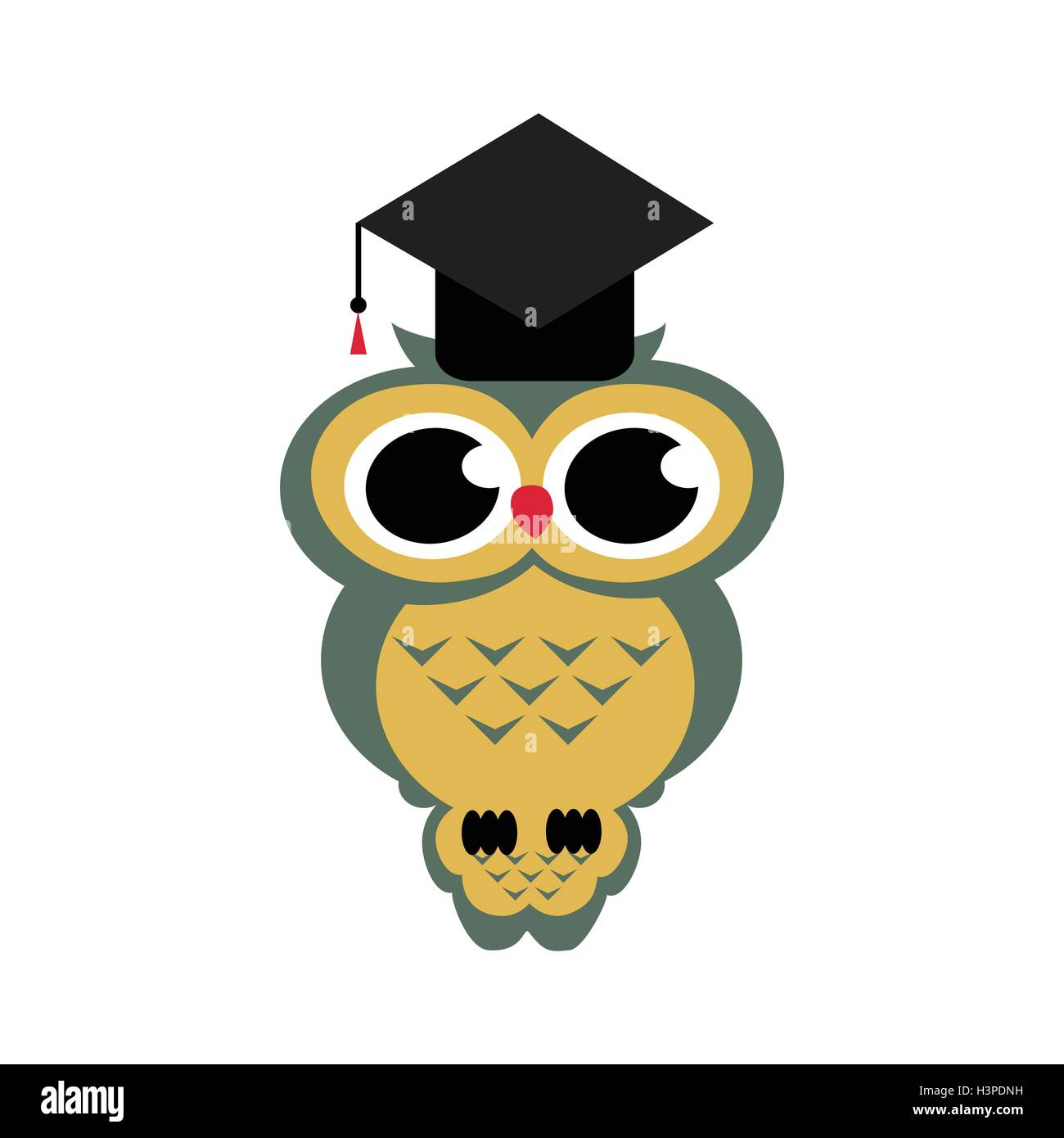 vector owl graduation on the isolated background cartoon stock