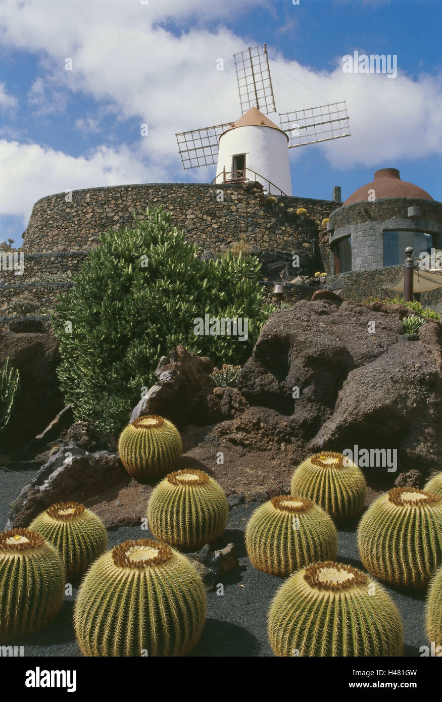 spain the canaries island lanzarote guatize jardin de cactus mill