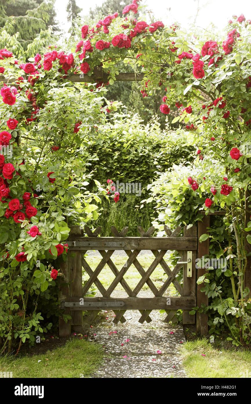 garden wooden gate rose arch climbing roses summer entrance