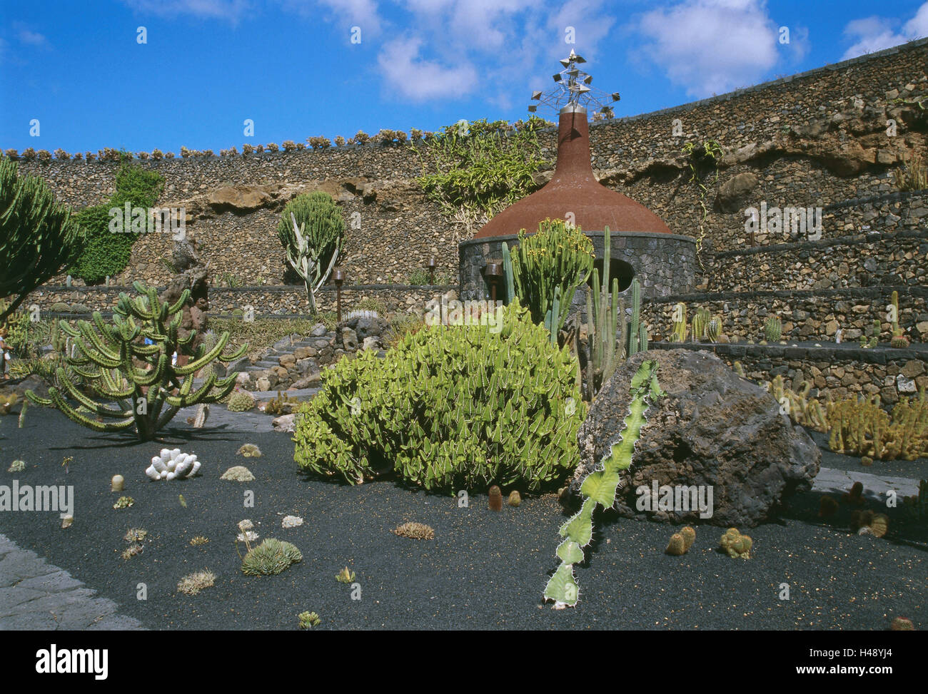 spain the canaries island lanzarote guatize jardin de cactus cactus garden cactus garden cacti cactus plants cactaceae variety