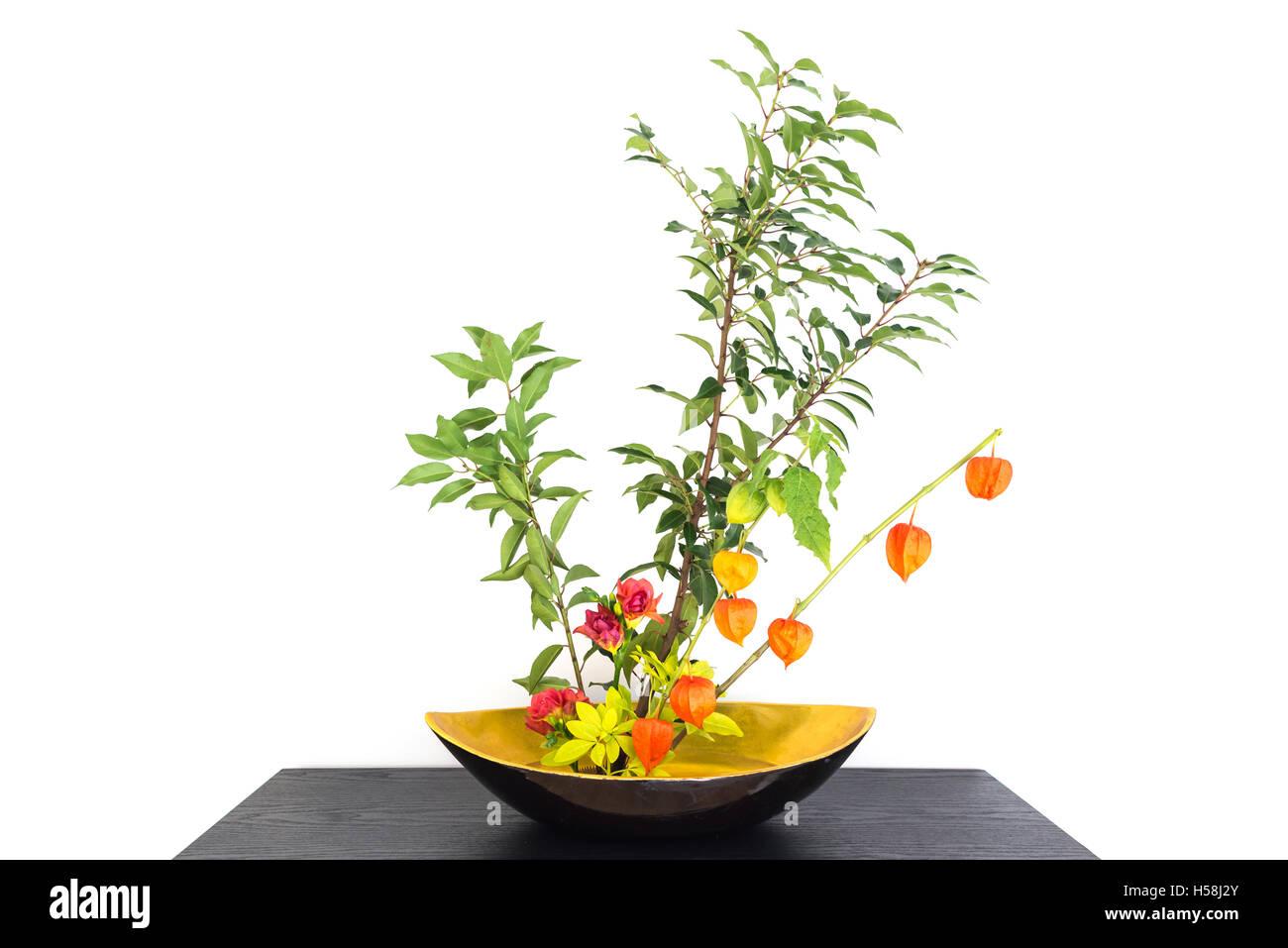 Autumnal japanese flower arrangement ikebana with physalis Stock Roy