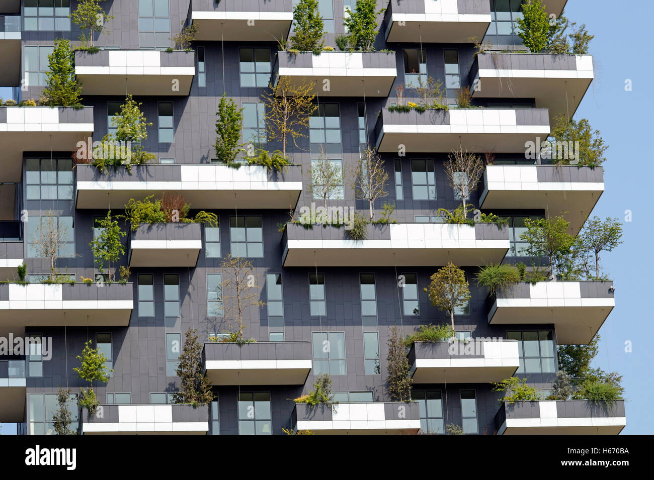 Balcony flowers garden flower green balconies for Balcony modern