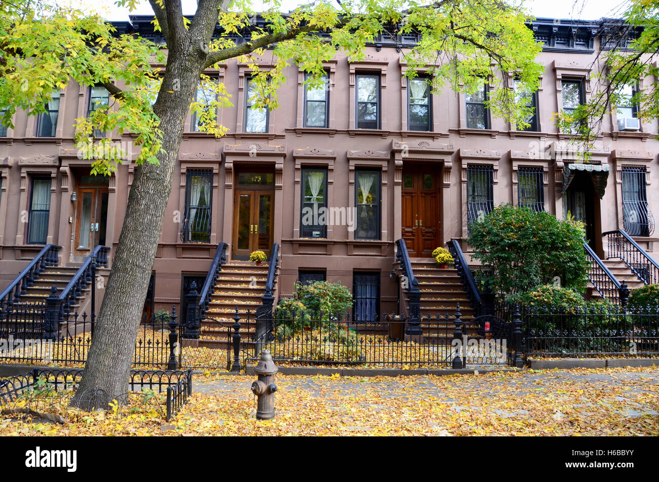 Brownstones park slope brooklyn with fall leaves and trees for Buying a house in brooklyn