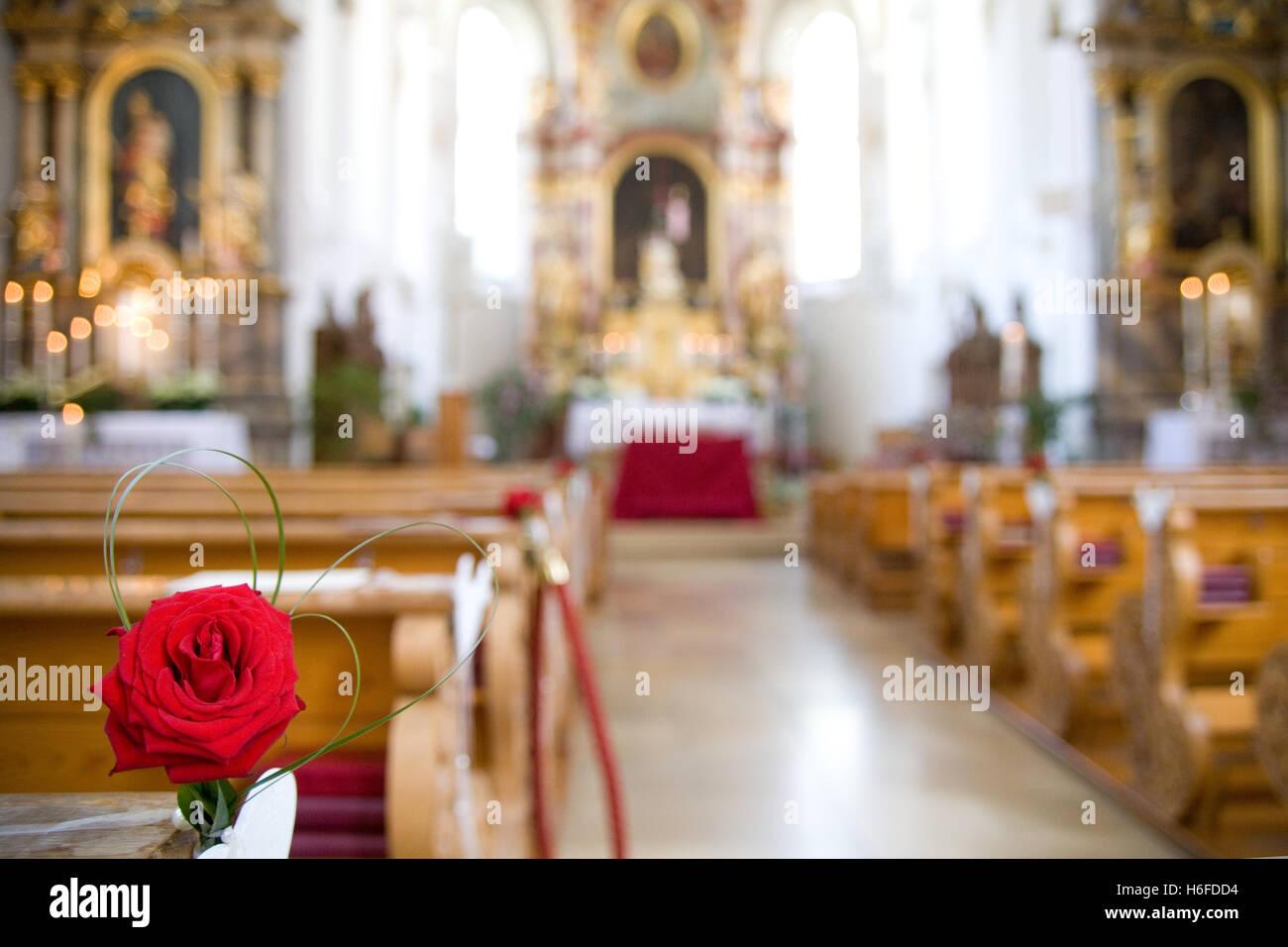Christian Wedding Decoration Rose In A Church