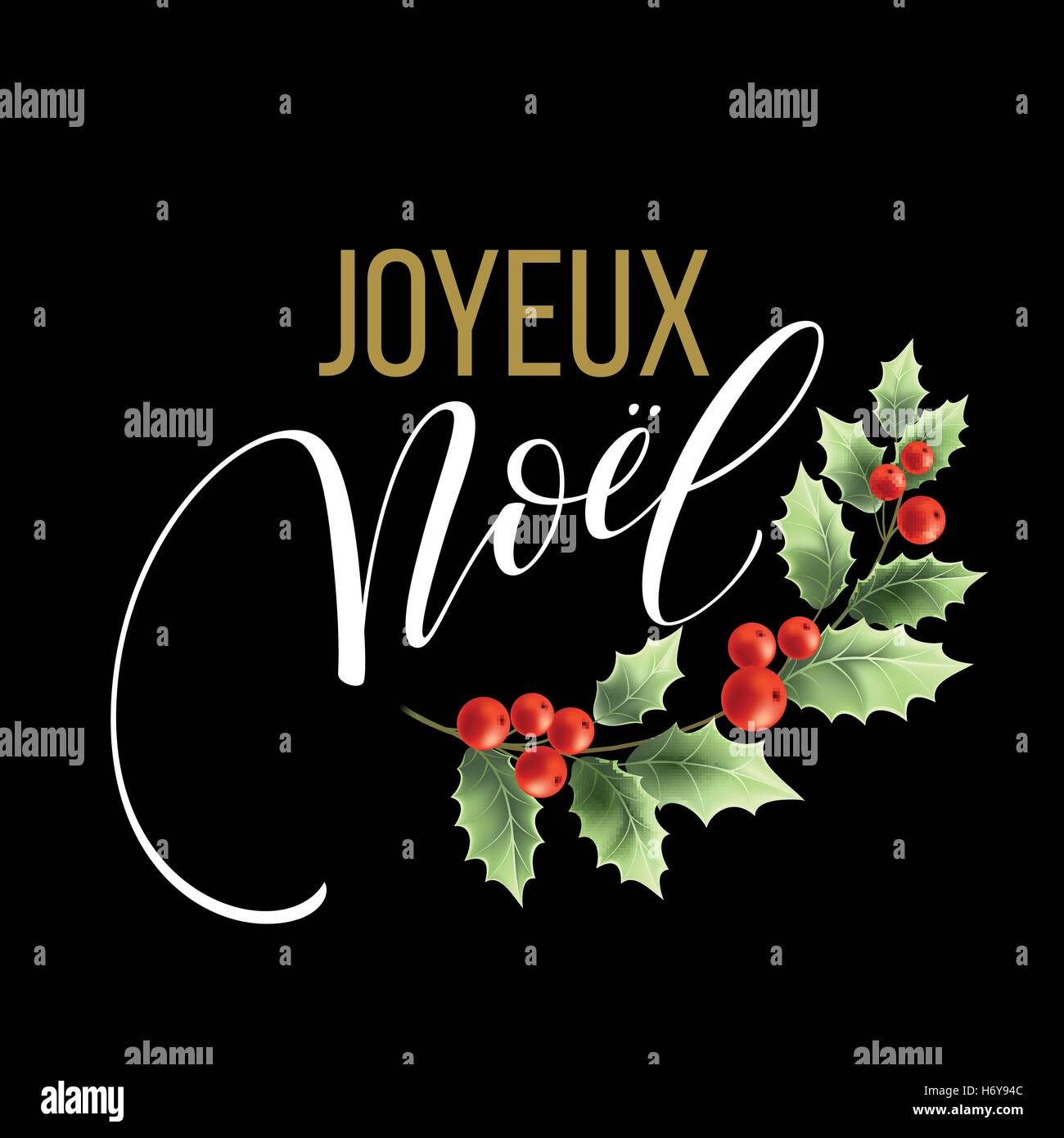 merry christmas card template with greetings in french language joyeux noel vector illustration eps10 - How To Say Merry Christmas In French