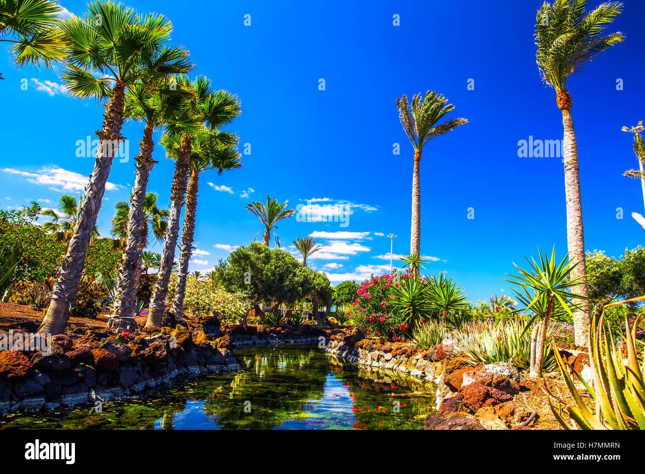 1366x768 beautiful tropical island - photo #36