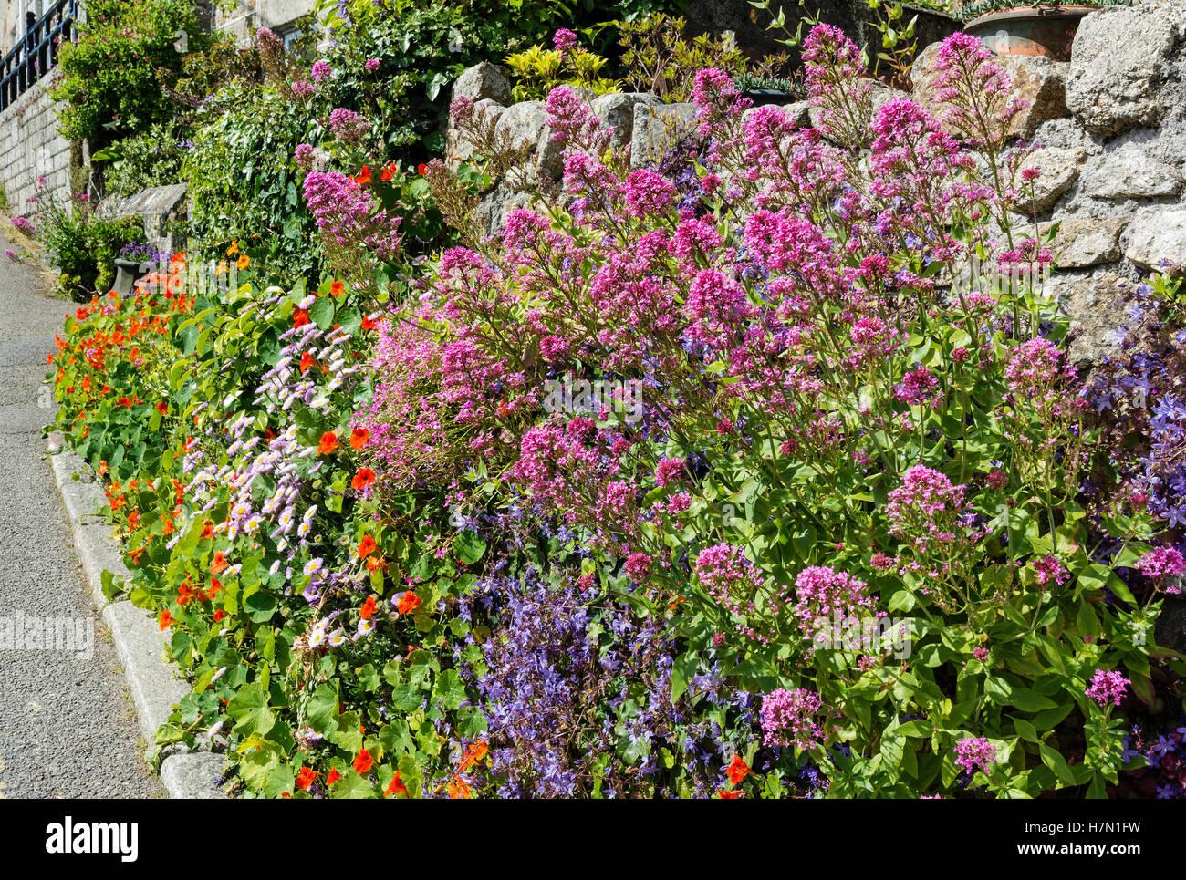Garden Wall Cottage Garden Plants Stock Photos Garden Wall - Cottage garden plants
