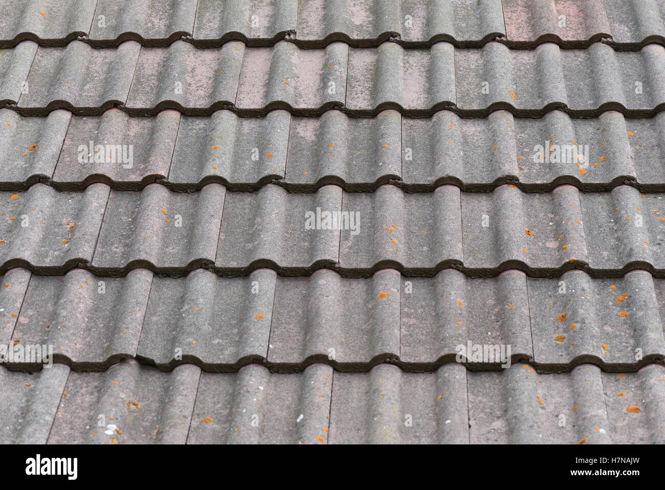 Old building roof tiles with moss and mold & Old building roof tiles with moss and mold Stock Photo Royalty ... memphite.com