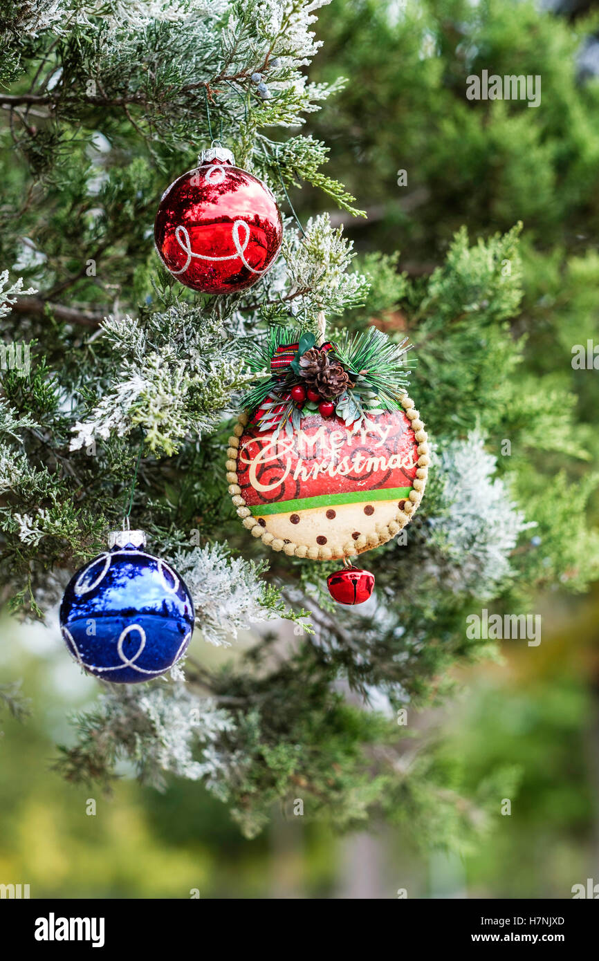 Frosted christmas ornaments - Stock Photo Three Christmas Ornaments On A Frosted Cedar Tree