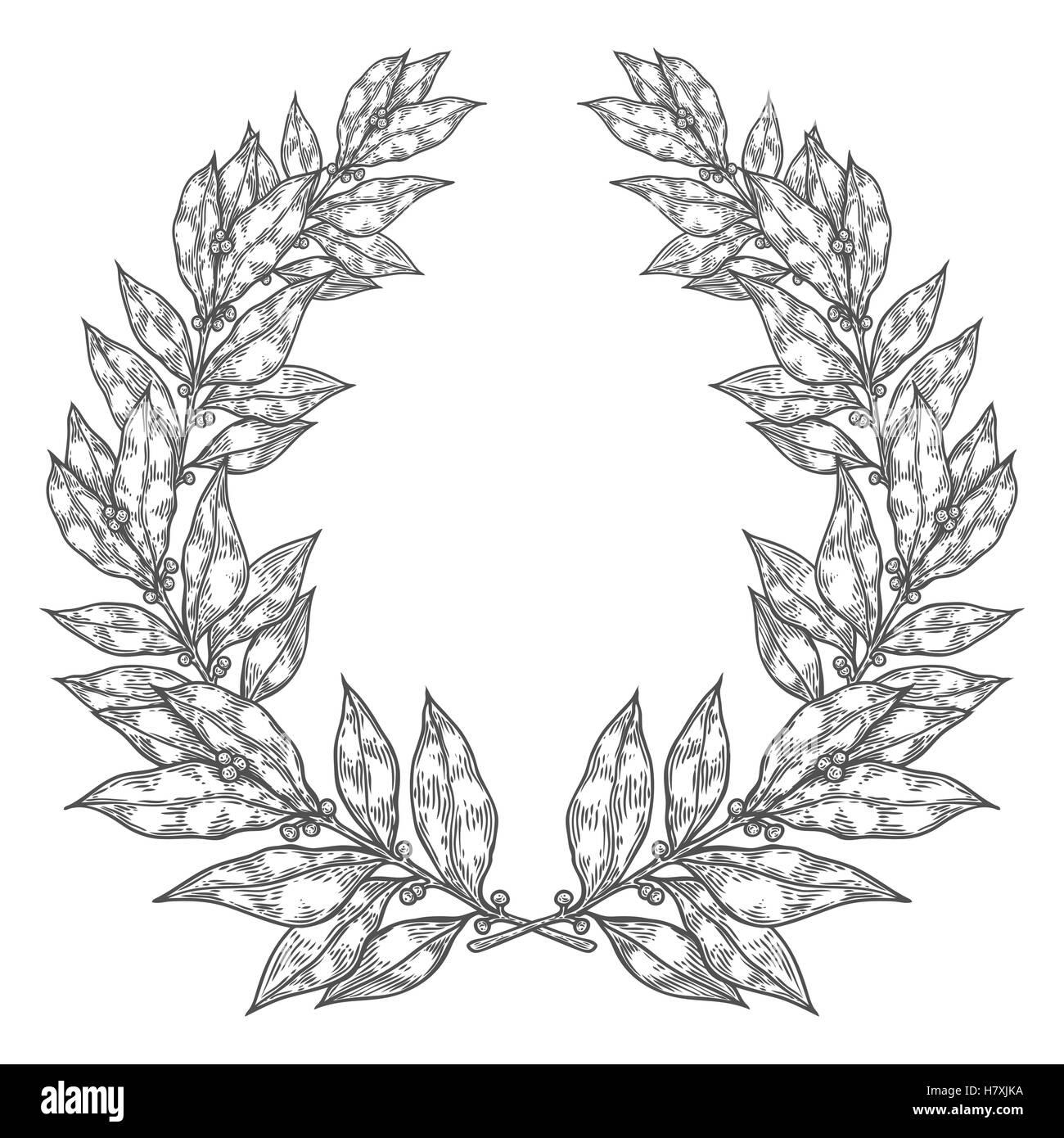 Uncategorized Drawn Leaf laurel bay white black leaf hand drawn vector illustration vintage decorative wreath sketch design elements perfect fo