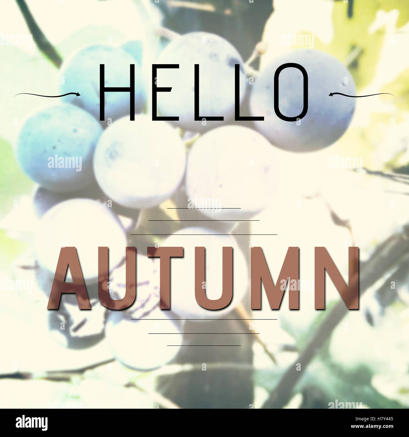 Inspirational Words Hello Autumn Inspirational Words On Blurred Background With Fresh