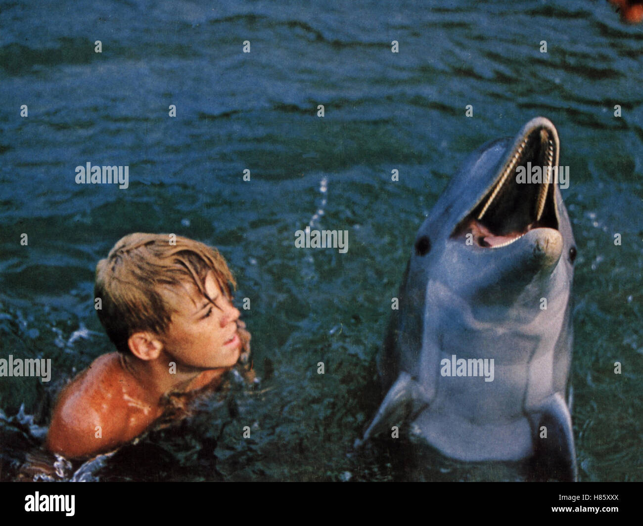 Luke Halpin Flipper