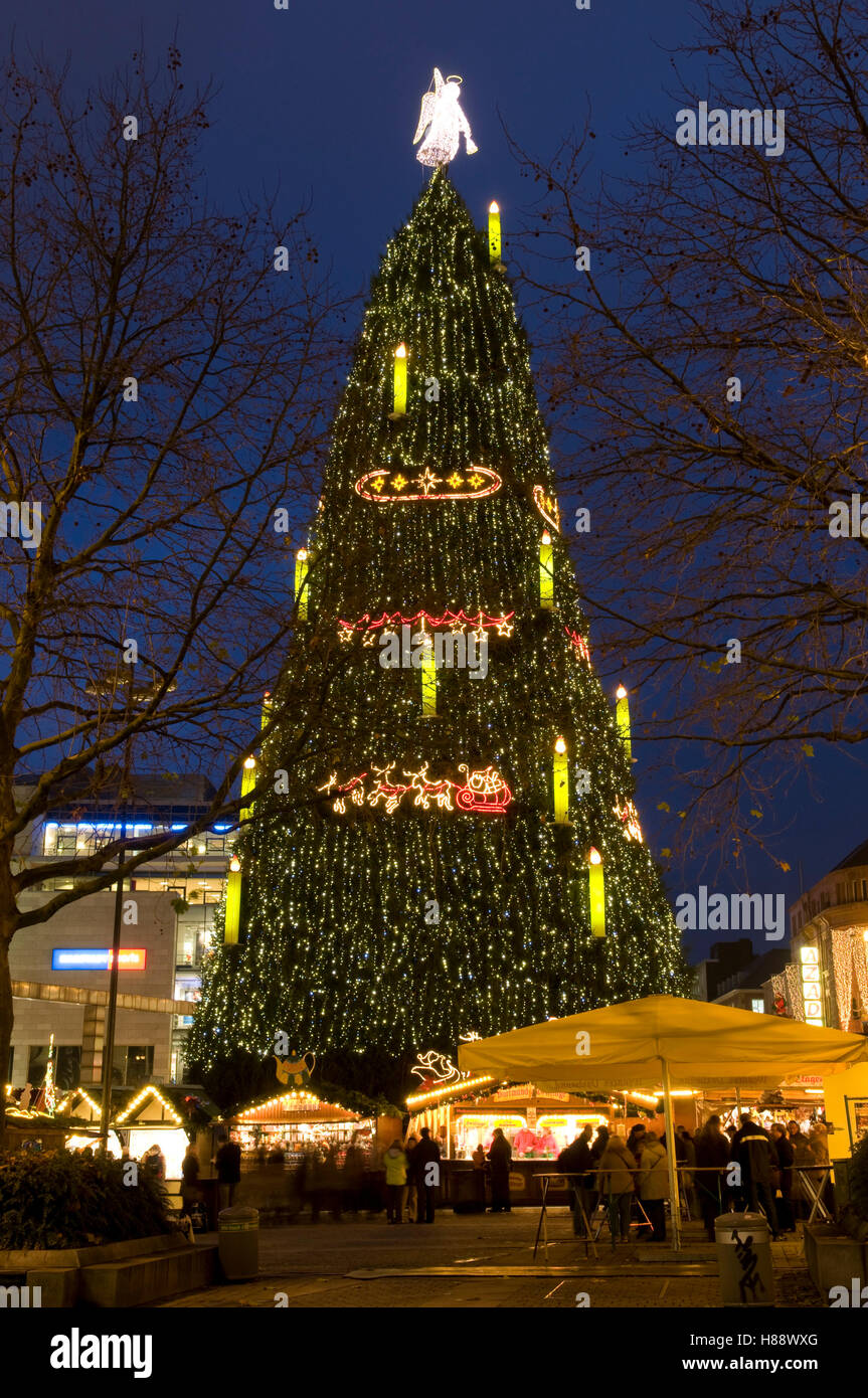 The biggest Christmas tree in the world at the Christmas market in ...