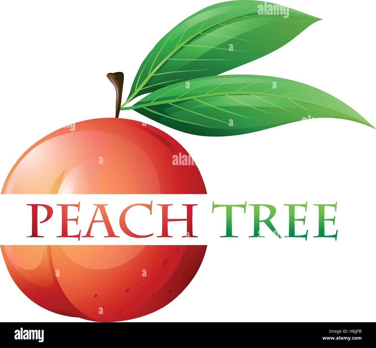 Font design for peach tree illustration stock vector art for Peach tree designs
