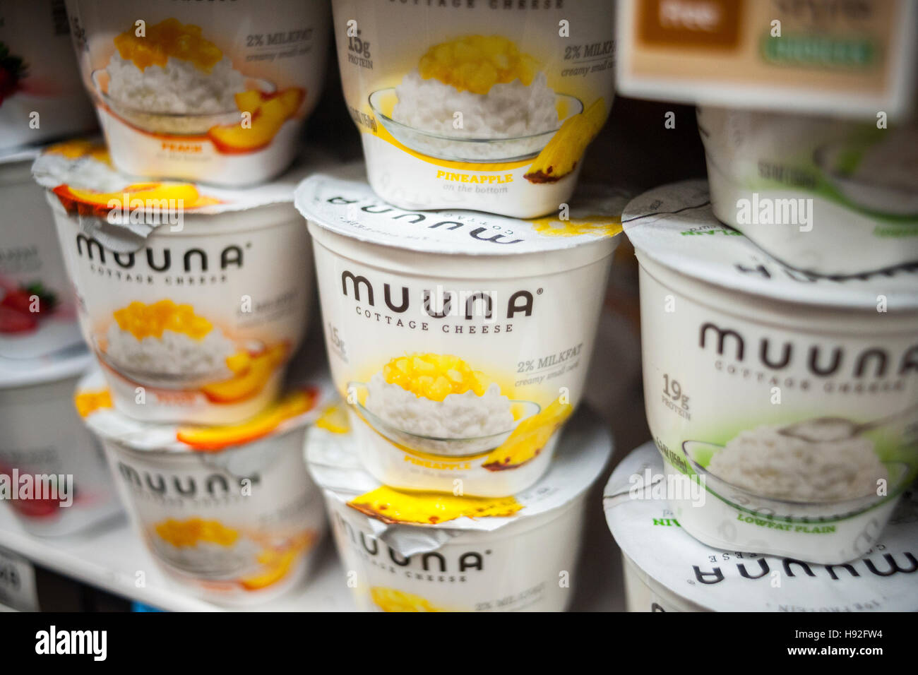 Containers Of Muuna Brand Flavored Cottage Cheese In A Supermarket New York On Sunday