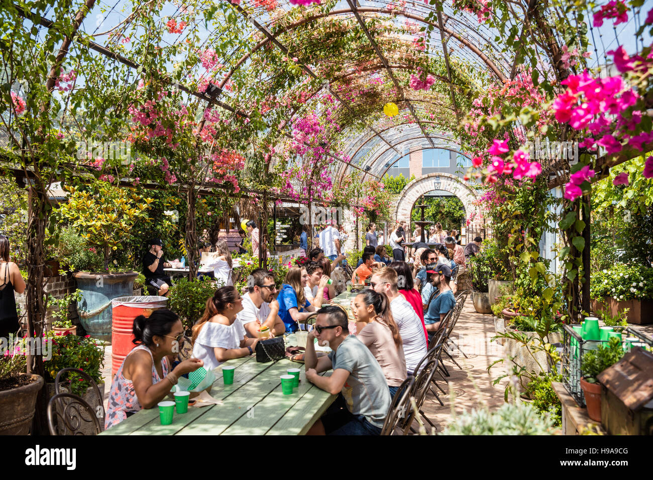 People dining under a canopy of leaves at The Grounds Alexandria Sydney Australia & People dining under a canopy of leaves at The Grounds Alexandria ...