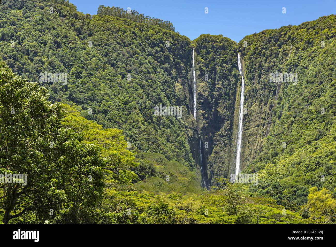 Rainforest On The Big Island: Waipio Falls In A Tropical Rainforest In The Waipio Valley