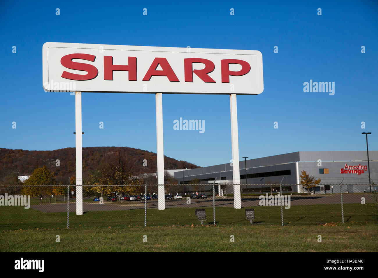 sharp corporation essay View/download income statement for sharp corporation (adr) (shcay) showing sharp corporation adr annual revenue, sales, profits and more for 2017, 2016.