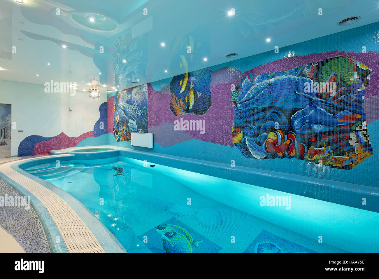 Spa swimming pool design with mosaic fish on the wall and for Swimming pool fish