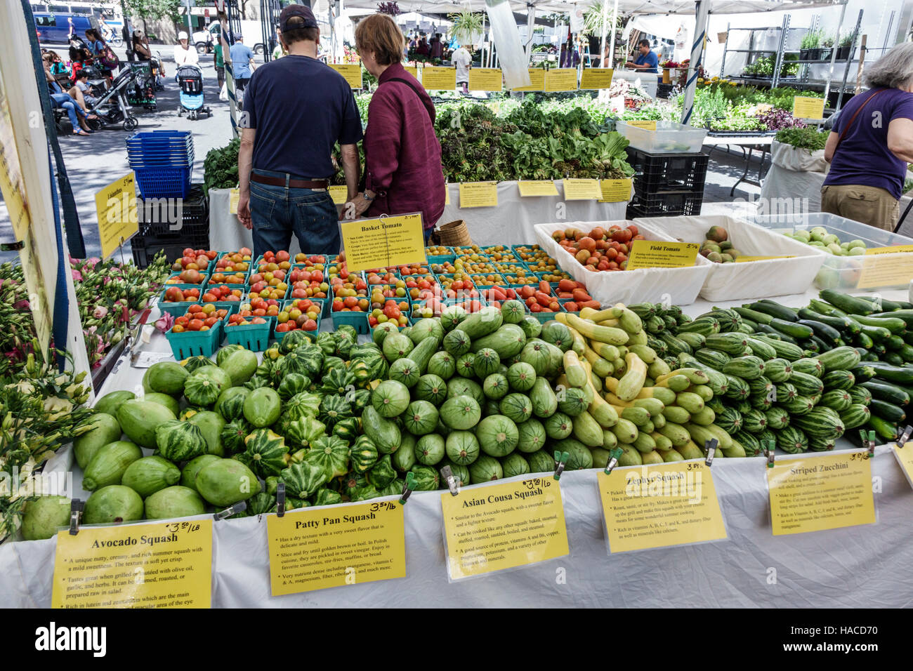 Manhattan New York City NYC NY Midtown Turtle Bay Dag Hammarskjold Plaza Greenmarket farmers market tent tables vegetables avocado squash patty pan Ze & Manhattan New York City NYC NY Midtown Turtle Bay Dag Hammarskjold ...