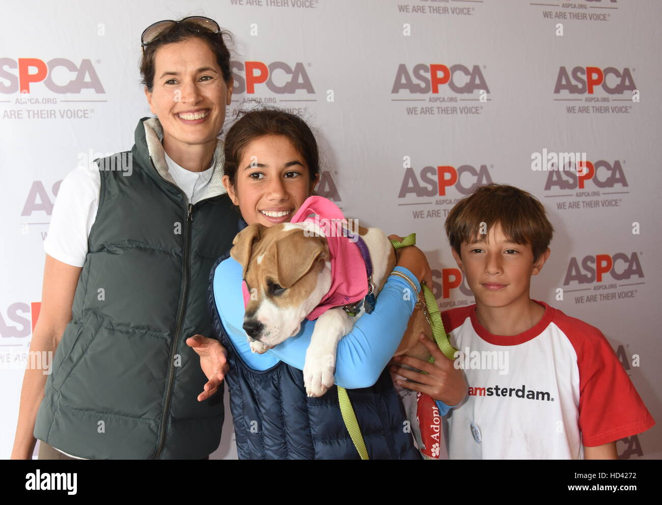 <b>Matt</b> <b>Lauer</b> and family adopt a dog from the ASPCA during ...