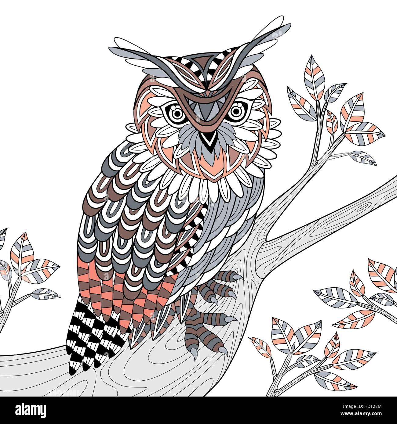 Wise Owl Coloring Page In Exquisite Style Stock Vector Art