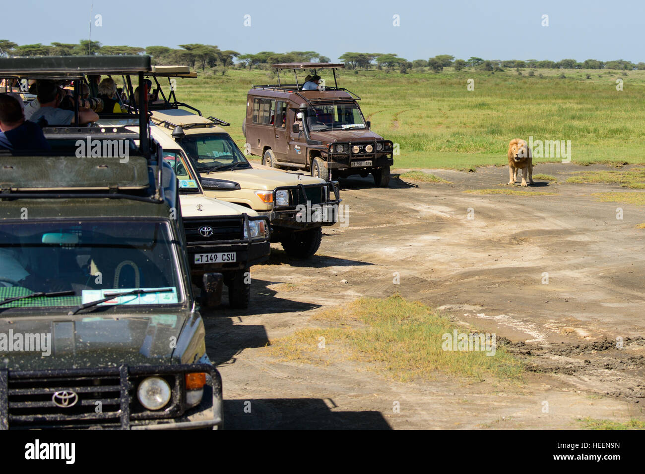 A Row Of Tourist Cars Four Wheel Drive Suv Suvs Vehicles Wait