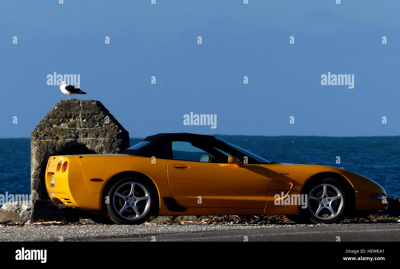 The Chevrolet Corvette is a sports car by the Chevrolet division