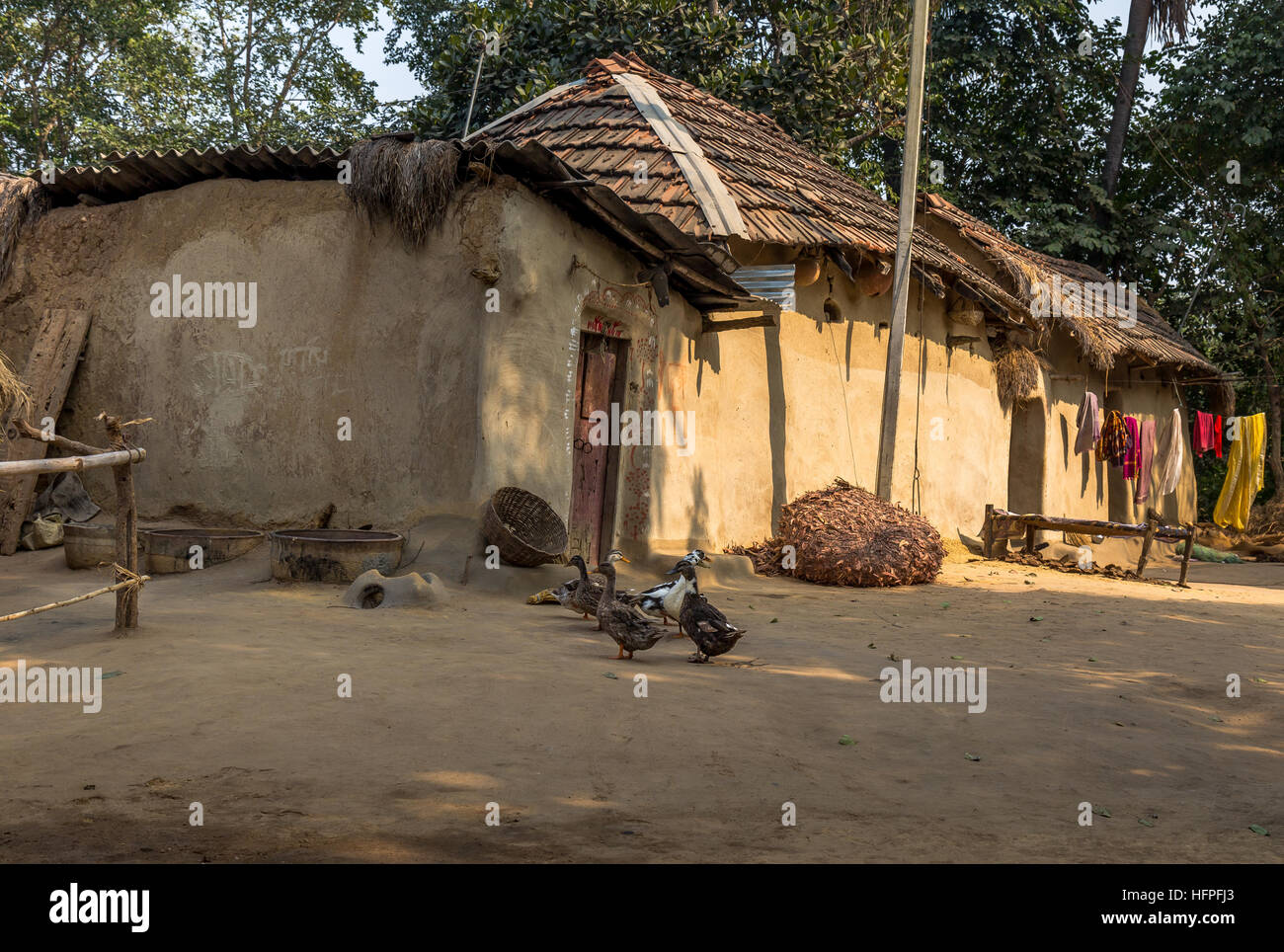 Indian rural village scene with mud houses and ducks in the courtyard photograph taken at